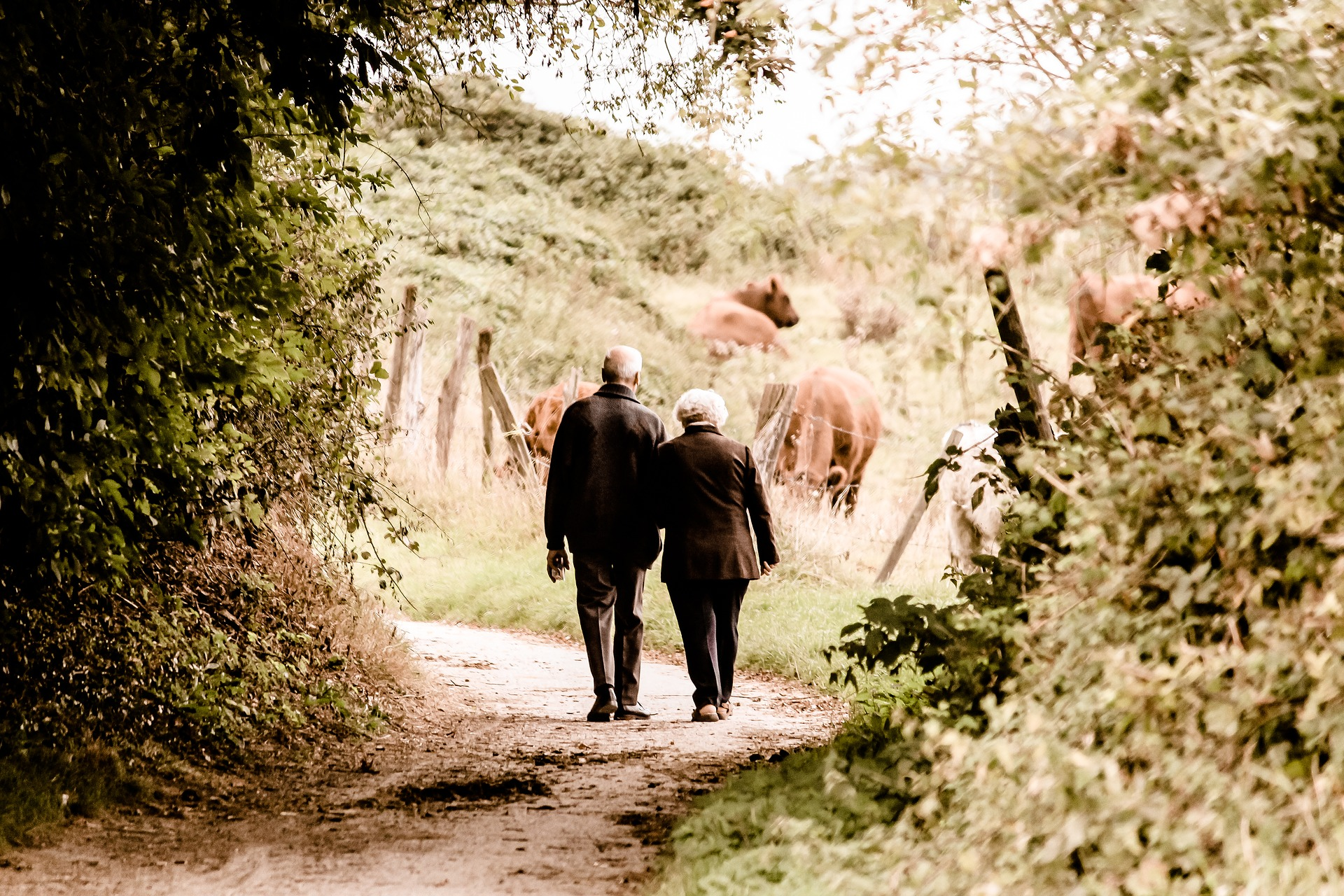 Advantages and disadvantages of online dating for seniors